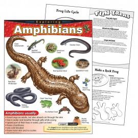 EXPLORING AMPHIBIANS CHART